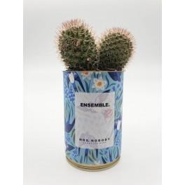 Cactus - Ensemble